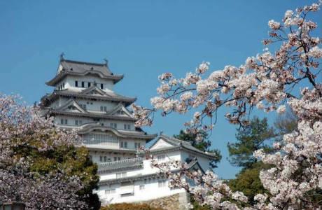 japan-house-behind-trees